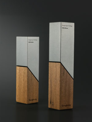 Google Impact Challenge Awards Trophies