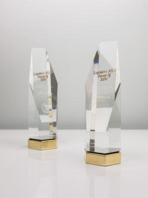 SafeWork NSW Crystal Glass and Brass Award Trophies