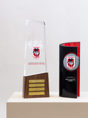 St George Illawarra Dragons Player of the Year NRLW Perpetual Award Trophies