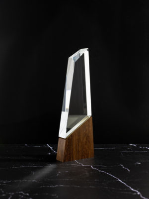 The Summit House Collection Crystal Timber Award