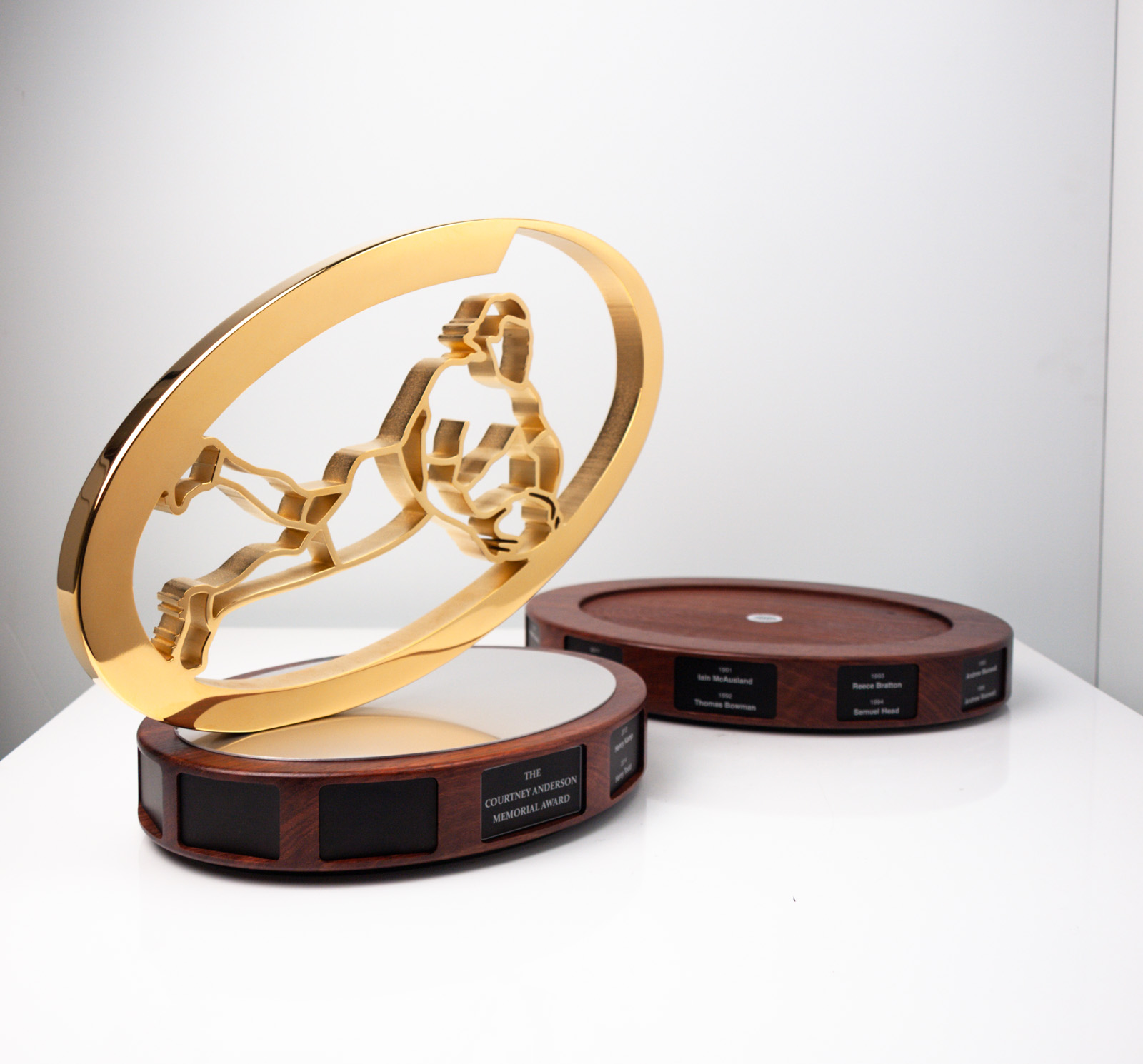 The Courtney Anderson Memorial Award Scots College Perpetual Football Award Trophy
