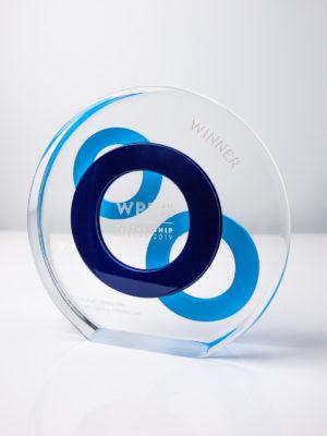 WPP Partnership Award