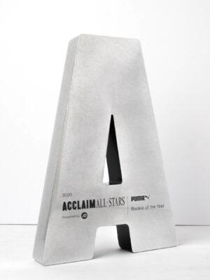 The Acclaim All Stars Bespoke Award