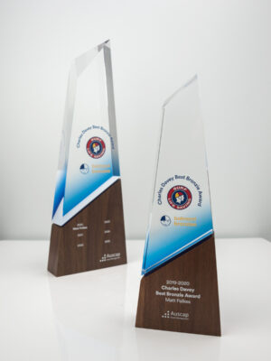 The Balmoral Bronzies Summit Award Trophies
