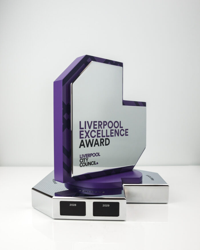 The Liverpool City Council Excellence Perpetual Award